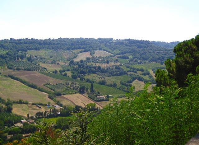 Vacanze-Italiane-seconda-tappa-Toscana-Arezzo-Tenuta-Lupinari