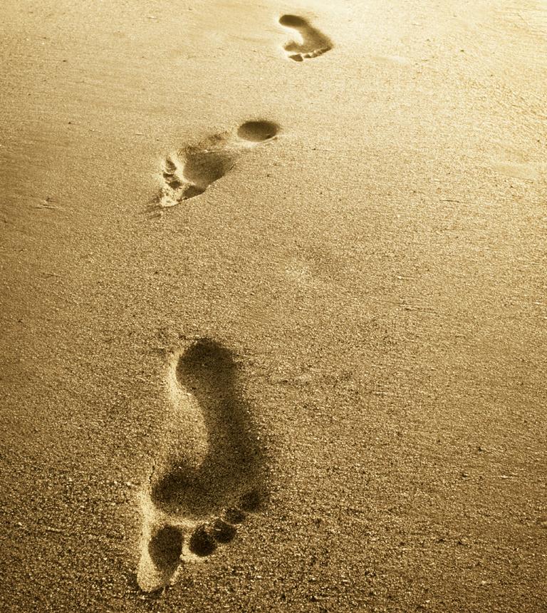 nelle-hawaii-camminare-pesci-walk-chinaman-hat