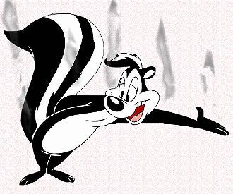che-puzza-puzzola-skunk