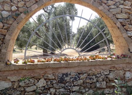 Puglia_StudentessaMatta82