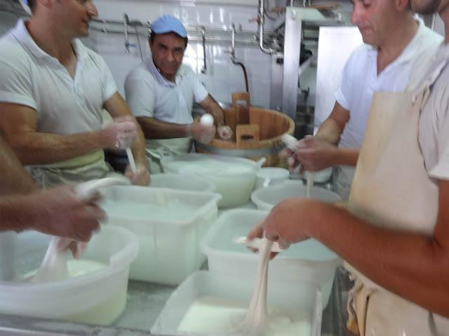 formaggi-tipici-di-puglia-scamorza-burratta-typical-cheese