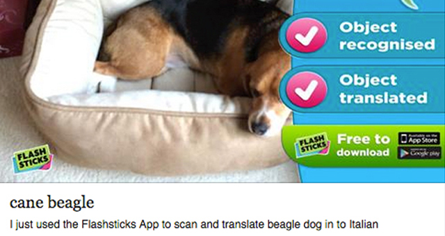 flash-sticks-app-learn-retain-italian-vocabulary-pictures