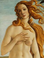 Botticelli_StudentessaMatta12