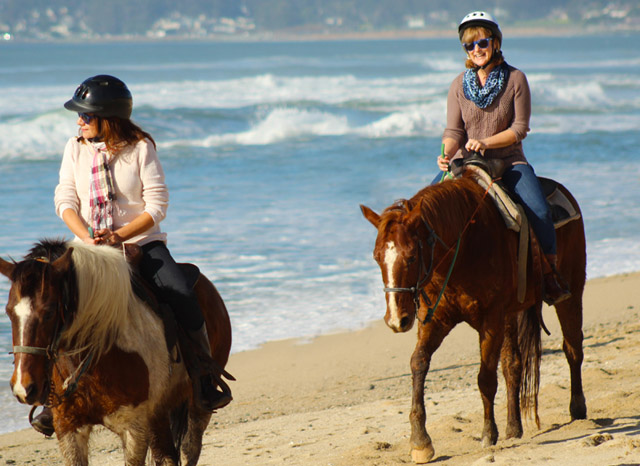 andare-cavallo-riding-horse-beach-useful-horse-lingo